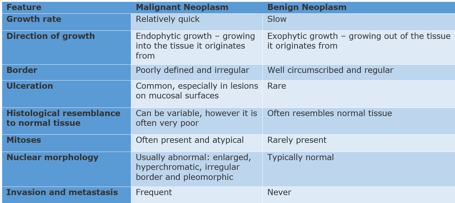 Benign Vs Malignant Neoplasms SimpleMed