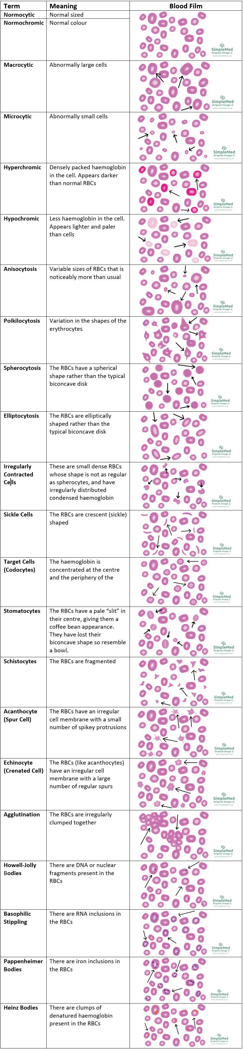 Different Blood Film SimpleMed