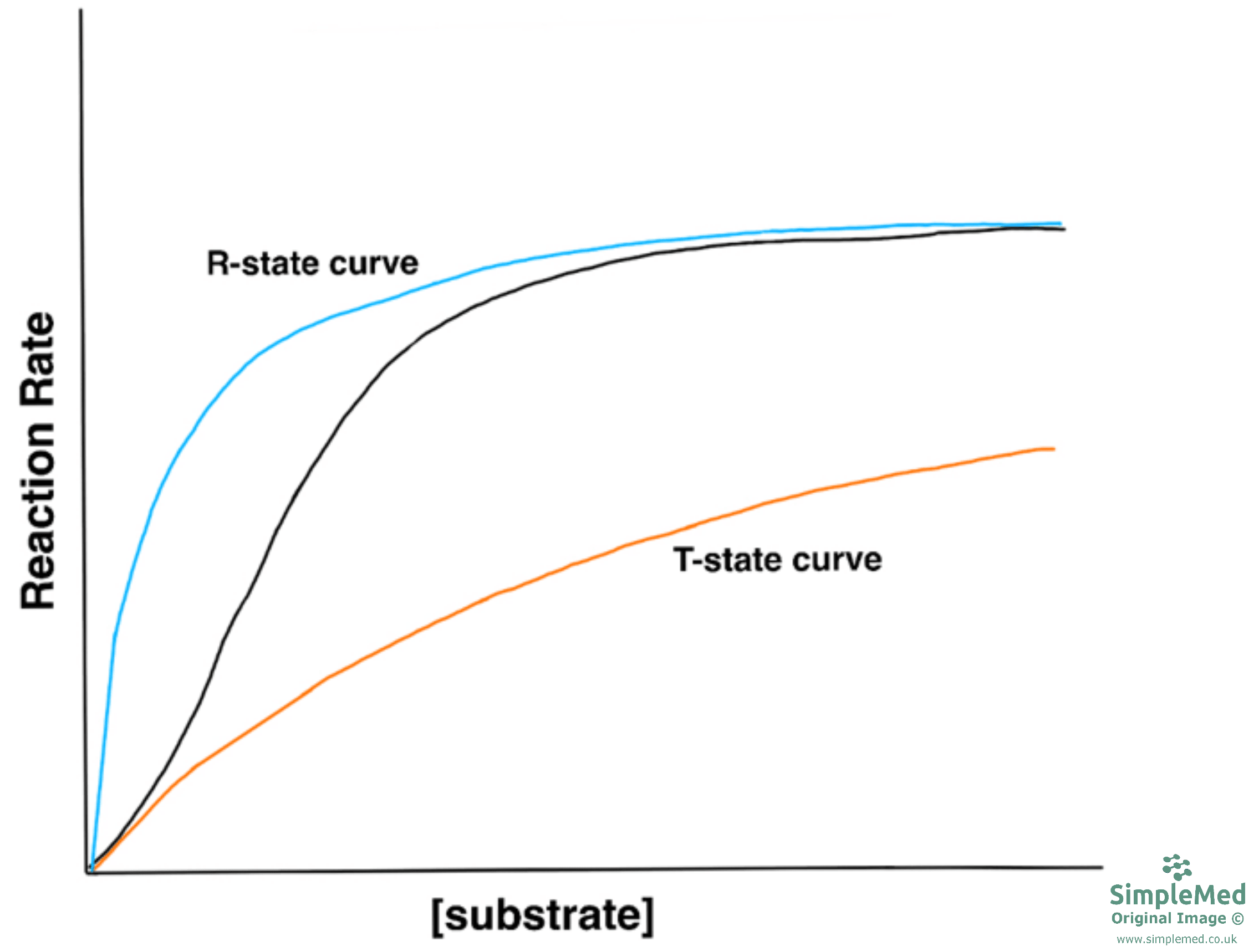 Graph of the R State and T State SimpleMed