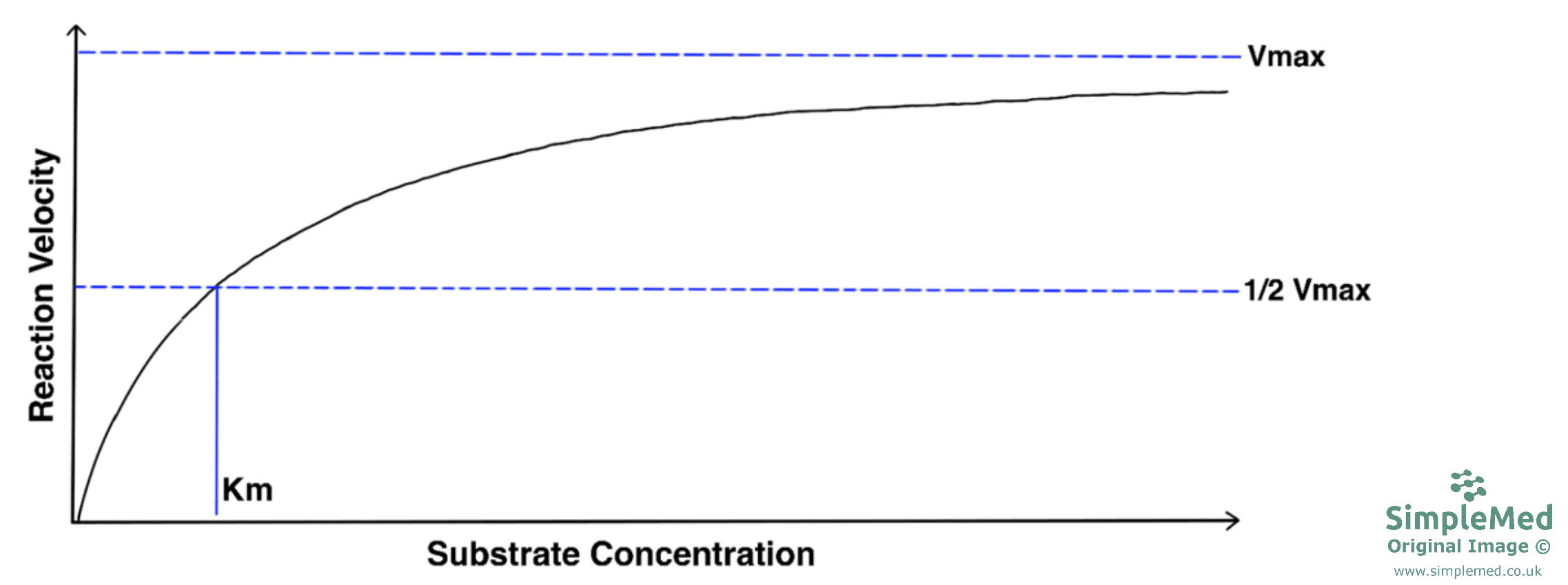 Graph of Reaction Velocity Versus Substrate Concentrate SimpleMed