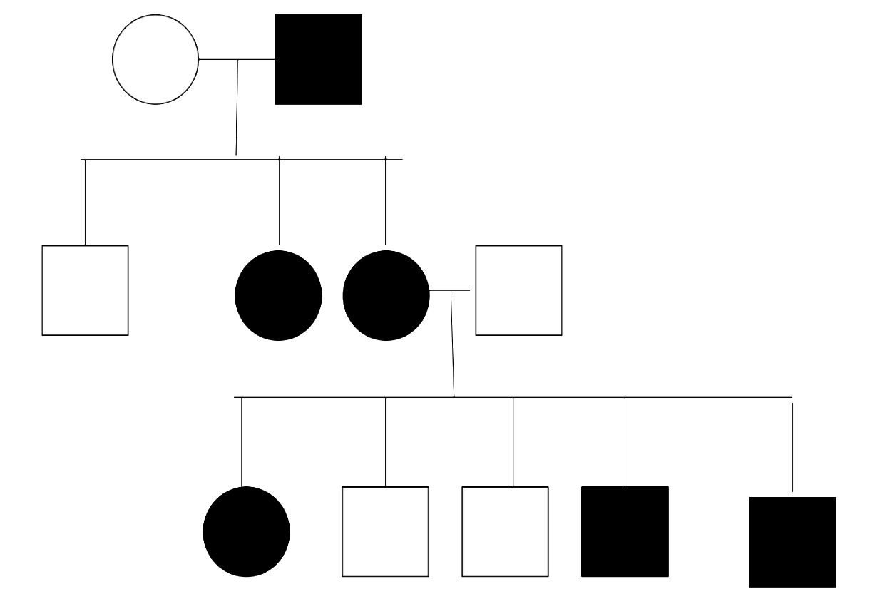 X-Linked Dominant Pedigree Chart SimpleMed