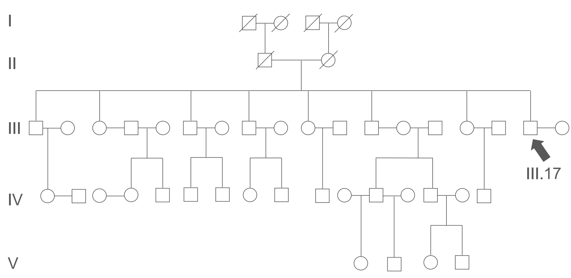 Pedigree Chart Example SimpleMed