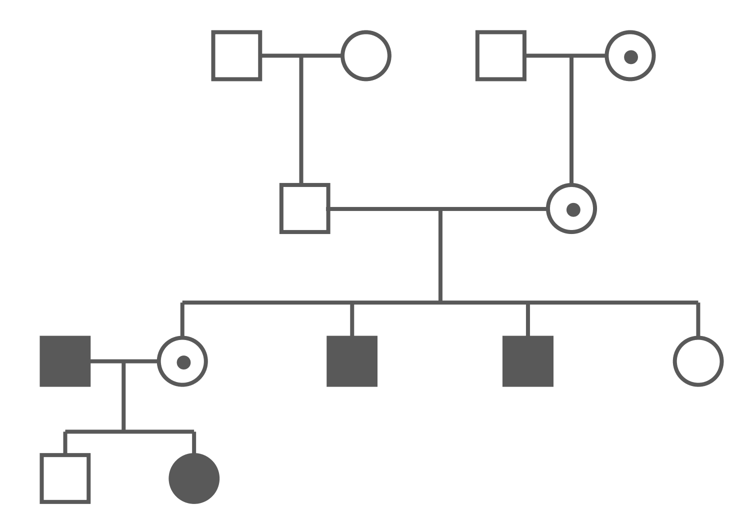 X-Linked Recessive Pedigree Chart SimpleMed